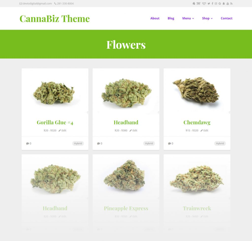 #1 Marijuana WordPress theme on the market - CannaBiz