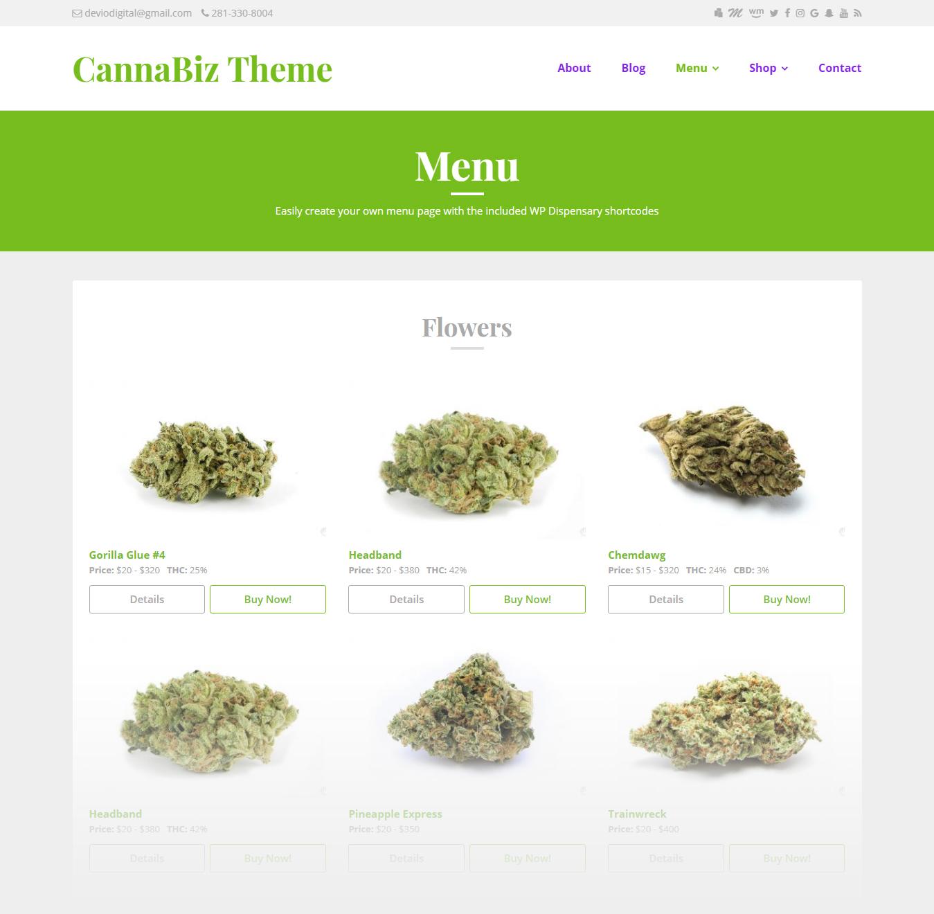 CannaBiz theme for WordPress