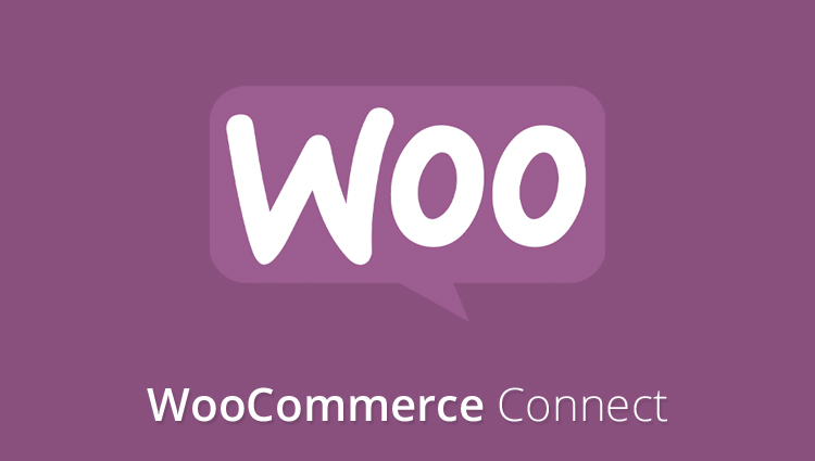 woocommerce-connect-add-on